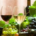 Portal wino