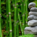 Śliczny oraz uporządkowany ogród to zasługa wielu godzin spędzonych  w jego zaciszu w trakcie jego pielegnacji.